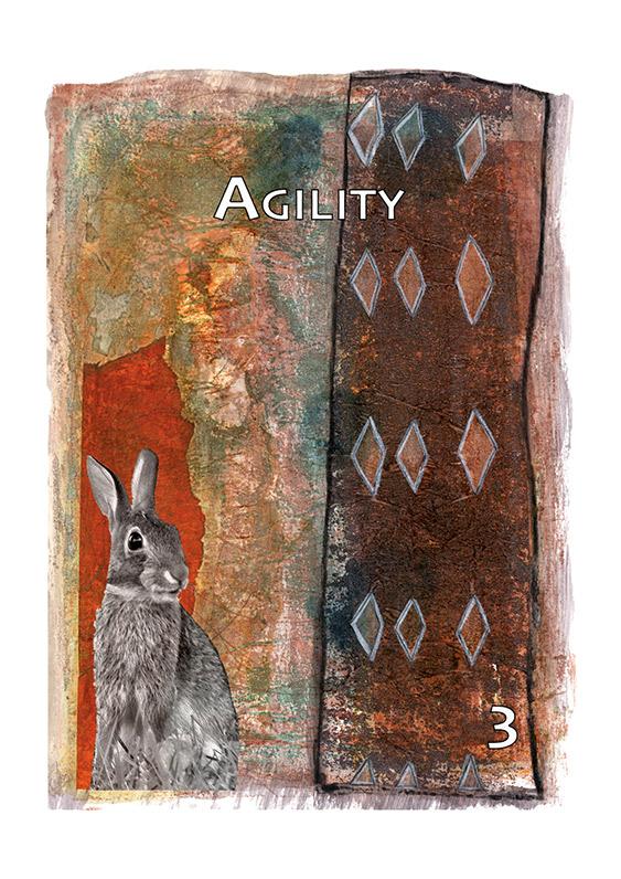 Agility Medicine Card